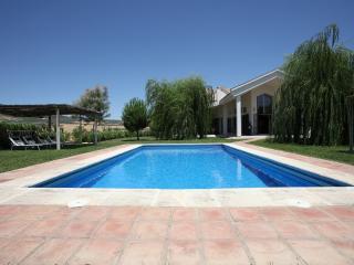 No. 1 on TripAdvisor: Luxury Villa in Rural Andalucía.