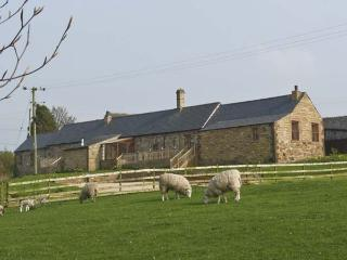 THE DAIRY , pet friendly, country holiday cottage, with hot tub in Milton, Ref 4