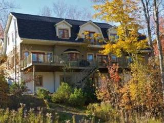 Million Dollar Home on Mont Tremblant Resort