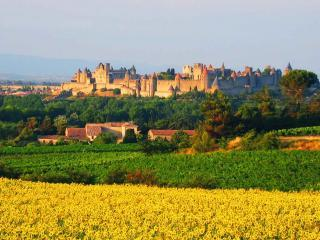 Come to Carcassonne!