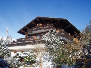 Superbly located Ski Chalet with wonderful views., Grindelwald