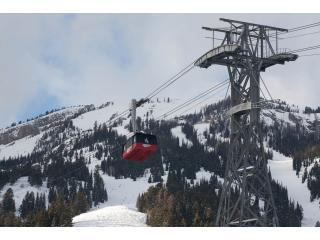 9 minute tram ride to top!