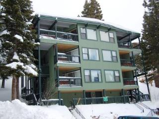 Luxury Ski-In, Ski-Out Condo ~ RA776