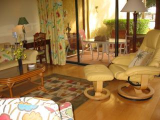 Living Area, Windows Onto Lanai
