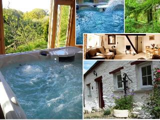 Blaenfforest Granary - Holiday Cottages Wales, Newcastle Emlyn