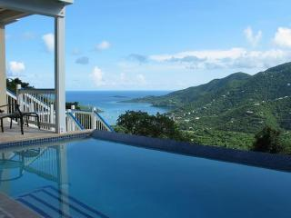 Blue Palm Villa - 3 bed/3 bath, views, pool., Coral Bay
