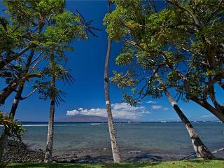 Puamana 38-2 Superior Ocean Front, Lahaina