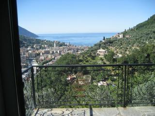 Villa Pia with pool Recco, Camogli, Cinque Terre