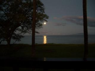 A spectacular moon set, the full moon shines across the water and into the living room.
