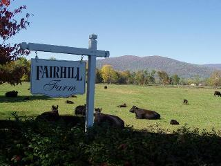 High Fields Farm with stunning mountain views, private pool, hiking, pond,& more
