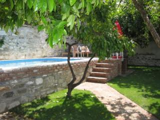 Pool surrounded with mandarin, grapefruit and pomegrante trees