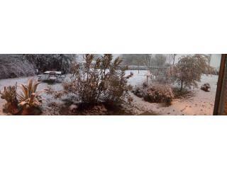giardino-neve