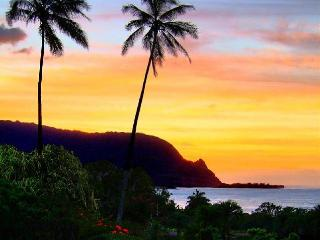 Stunning Waterfall, Mountain, and Ocean Views for this Hanalei Bay Resort 2 BD