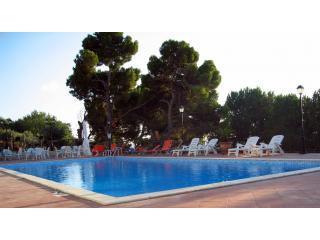 The common swimming pool