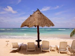 Charming Beachfront condo - Great Snorkeling, AC, Wifi