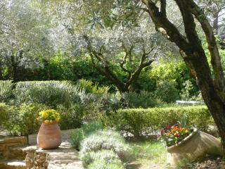 Gardens with olive grove Les Olivettes