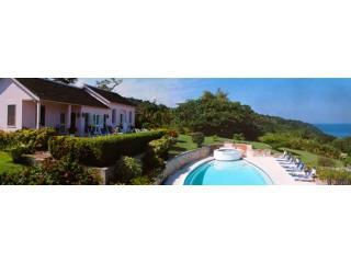 5 Bedroom Luxury and Affordable Villa on 9 acres, holiday rental in Jamaica