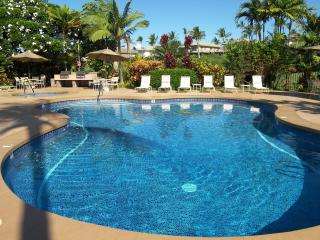 Beautiful Modern Wailea! Remodeled & Affordable