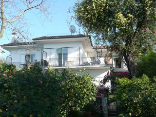 Villa Donna Elisa,seafront Sorrento center, perfect family accomodation