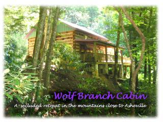 Wolf Branch Cabin, Privacy Abounds 34 miles North of downtown AVL HotTub, Pet OK, location de vacances à Asheville