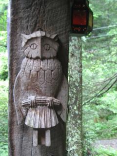 Geema's Owl