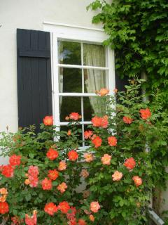 Trumpet vine and roses partially cover the home in the summertime