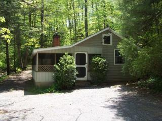 Private 2BR Cabin on Mountain Stream-Screen Porch, Wintergreen