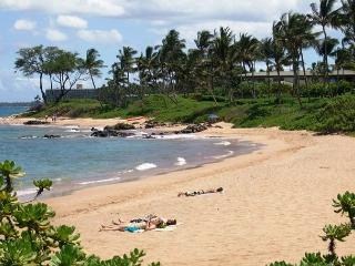Wailea Ekolu #407 Completely Remodeled with Panoramic Ocean Views. Sleeps 2