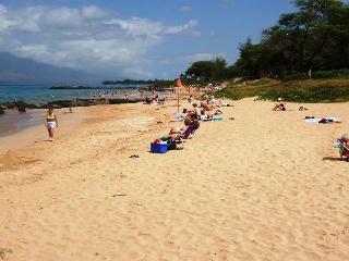 Kamaole Beach #3 just stesp from the condo
