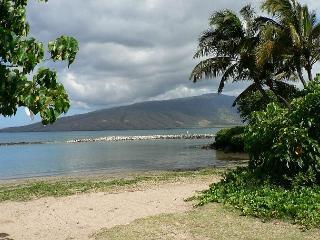 Beach across the street from Kihei Bay Surf
