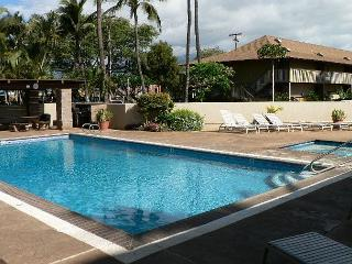 Kihei Bay Surf #250 Studio Sleeps 2, Kitchen, Wifi, Near Beach, Great Rates!
