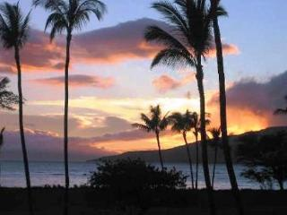 Stop! Look No Further! Leinaala #104 Oceanfront Ocean View 1Bd/1Ba Sleeps 4, Kihei