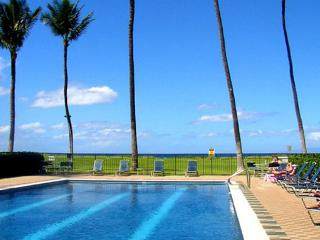 Waiohuli Beach Hale #D-124 1Bd/1Ba Oceanfront Complex, Sleeps 4. Great Rates!