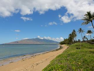 Waiohuli Beach Hale #D-114 Lovely Unit, Sleeps 4 1 Bd 1 Bath Great Rates!, Kihei