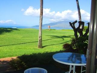 Waiohuli Beach Hale #D-127 Direct Oceanfront Kihei  Steps from the beach!