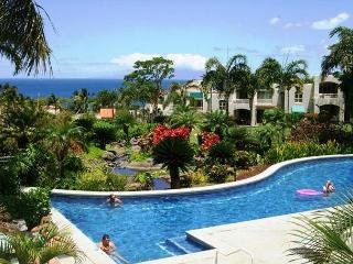 Palms at Wailea #1501 Ocean View Inner Court Ground Floor 1Bd 1Ba Sleeps 4