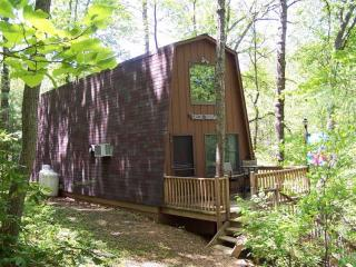 Secluded Mountain Cabin by Pool - Rockwood, Staunton