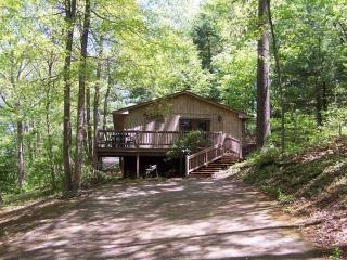 Pet Friendly Cabin near Blue Ridge Parkway