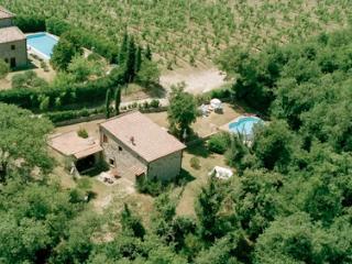 Villa PetrAlexa, Tuscany cottage in Chianti area, Gaiole in Chianti