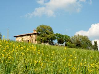 Tuscany 4 bedroom villa with private pool, peaceful location, WIFI. (BFY13544)