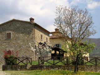 Lovely Villa with Countryside Views of Tuscany - Villa Andreina - 14, Subbiano