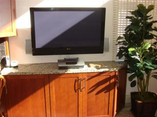 42 inch flatscreen cable TV, DVD Ipod charger