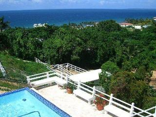PRE SEASON LOW RATE 5 Star 4 BEDROOM VILLA, Rincón