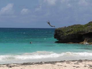 Take the Leap at Navio --jump feet first only
