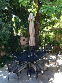 Huge shade tree cools table and seating for up to 18 on flagstone back patio.