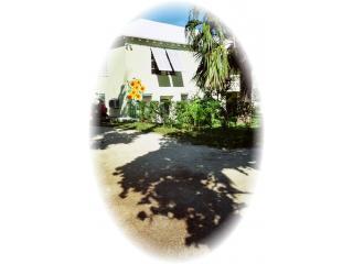 Sunflower Studios, Pembroke - 5 mins from Hamilton