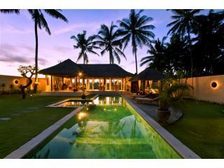 Private Pool Villa with 14 mtr pool, 2k UBUD, Wifi, Parking, Security, Views