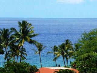 Palms at Wailea #1101 Great Ocean Views! Large Sun Deck!  2/2 Great Rates!