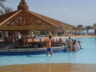 main pool bar