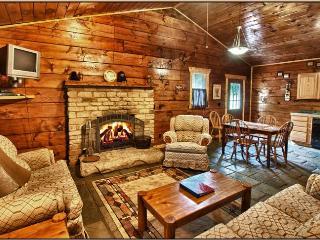 Bryson City - Cherokee - Bear Creek Cabin